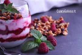 Coppa con Crema di Yogurt, Lamponi pestati e Granola