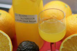 Liquore all'Arancio e Frutto della Passione